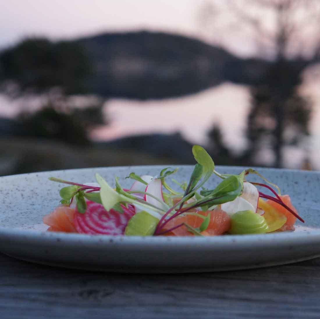 Förrätt med lättrimmad fröyalax, betor, rädisa och gräslöksmajonnäs från en av förrätterna på restaurang Västersalts meny på Bokenäset Hotell & Konferens